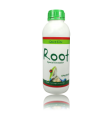 Root Green Line