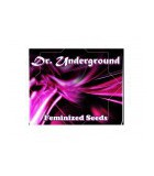 DR. UNDERGOUND
